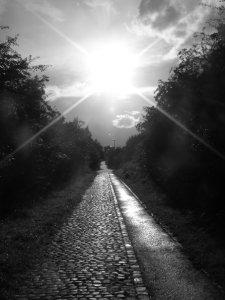 A Sunlit Lane